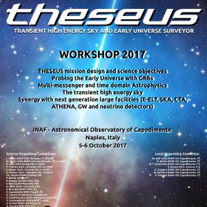 Theseus Workshop, Napoli, 5-6 Oct 2017
